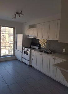 Completely renovated large 3½ in the very heart of the Plateau