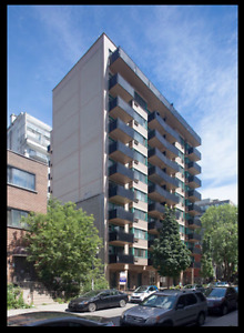 Amazing 3 1 2 One Bedroom Mcgill Ghetto July Lease Transfer City