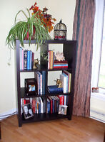 book and ornament shelves