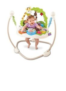 Go Wild Fisher Price Jumperoo