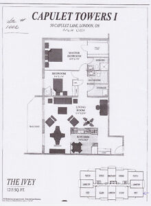 Large 2 bdrm-2 bath apartment for rent near Western - Sept 1st