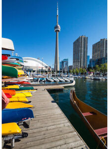 Female roommate wanted- downtown harbourfront