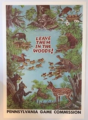 Vintage 1970s Pennsylvania Game Commission PA PGC Sign Poster Deer Hunting