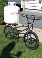 Bmx fit bike
