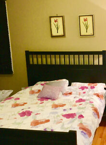 IKEA queen bed ( very good condition)