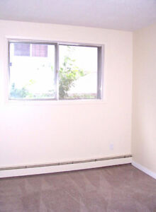BACHELOR SUITE/MAIN FLR*CLOSE TO UNIVERSITY,WHYTE AVE&MORE..