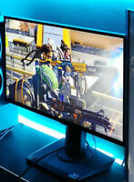 1080p 144Hz VG259Q 1ms ASUS TUF Gaming Monitor (ideal for BR)
