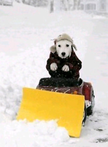 *Snow Removal.* Sign Up NOW! *$80/Month.* ~> Call Today !! =].