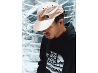 Supreme/The North Face *newly released* Brand New SS18 Metallic Rose Gold 6 Panel Cap