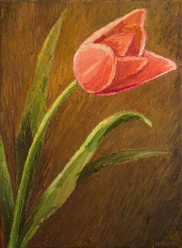 Tulip Flower ORIGINAL HANDMADE OIL PAINTING ON CANVAS Realism Still Life 9 x 12
