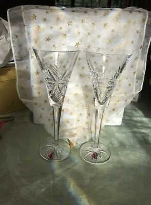 Waterford SNOW CRYSTAL Toasting Champagne Flute Glass Ireland Snowflake new tags