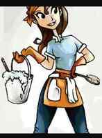 Cleaning and Organizing Services  ( Leth & Area)