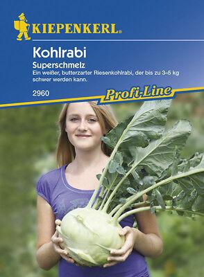 """Kohlrabi """"Superschmelz"""" butterzart Riesenkohlrabi 3-5 kg schwer  ca. 60  Samen"""