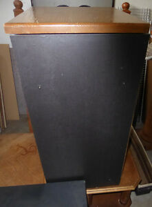 Multi-media stand for record player with glass door on wheels Kitchener / Waterloo Kitchener Area image 3