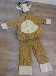 Childrens Halloween or Dress-Up Costumes