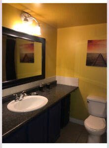 Executive furnished condos near West Edmonton Mall!