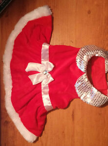 Puppy's Christmas Dress