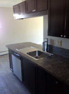 ONE MONTH FREE IN REMODELED 2 Bedroom