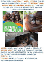 Fundraiser For International Animal Rescue's Orangutan Project