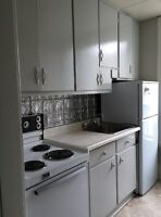 Trent & SSFC students welcome - Apartment Downtown