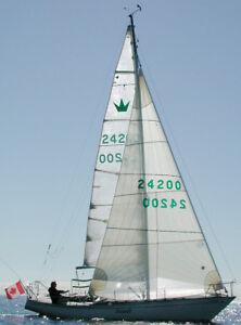 sailboat 31'