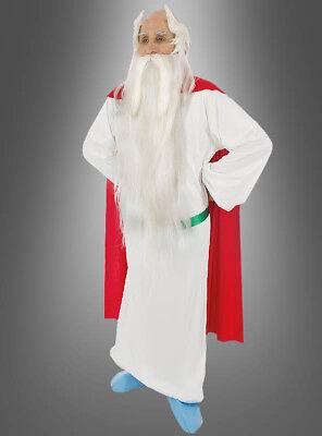 Original Miraculix Kostüm aus Asterix Karneval Gruppenkostüm für - Miraculix Kostüm