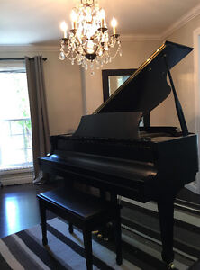 ESSEX BY STEINWAY & SONS EGP 155CM GRAND PIANO