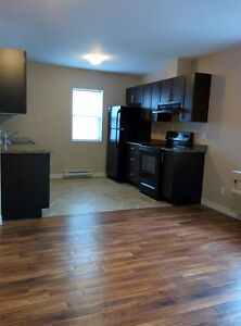 One Bedroom Apartment, Available SEPT/OCT 1ST, $950.00 ALL IN