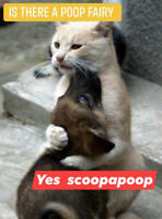 THERE IS NO POOP FAIRY.....CALL SCOOPAPOOP