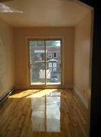 Bright upper 3 1/2 for rent in Ville Lasalle,