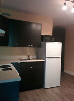 Bachelor apartment in Leslieville