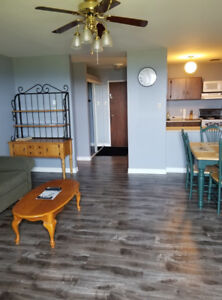 1 bedroom fully furnished Apt available for short term rental