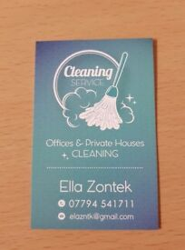 PROFESIONAL CLEANING SERVICES
