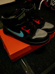 NIKE SB Shoes In good condition