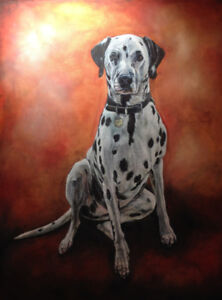 Pet/animal portraits - Equestrian, dogs, cats and people