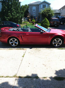 2000 Ford Mustang Red Convertible