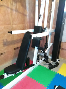 NL Multi-gym with an adjustable Ab bench