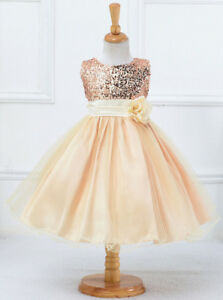 Flower Girls Blush/Peach Party Dresses Sz 6  & 7 - New