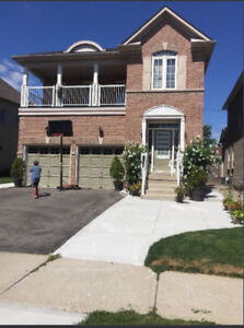 Brampton-Basment for rent
