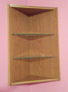 Corner wall Curio display unit - for you to make a cash offer on
