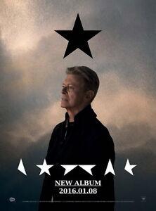 MX03590 David Bowie - 1947-2016 English Popular Music Singer 14