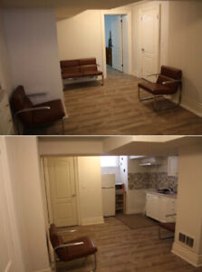 Spacious fully renovated basement for rent in downtown Toronto