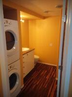 Nice one bedroom basement suite in stonebridge-utilities include