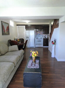 Beautiful fully furnishes walk in  Basement for rent