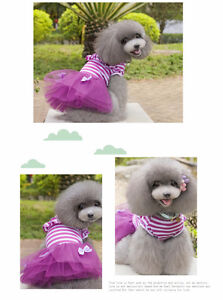 Cute dog clothing for sell