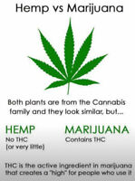 HEMP hype - what's it all about and what should I know?