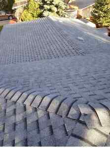 CATHEDRAL Roofing & Renovations all year!!!  Regina Regina Area image 6