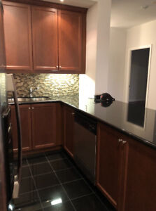 Kitchen Cabinets + Counter tops
