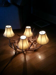 Handmade naturally shed white tail light fixture