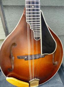 bill davis hand made mandolin